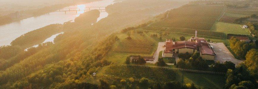Wijnhuis Vina Erdut